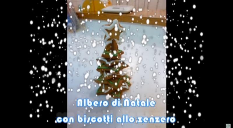 biscotti-zenzero